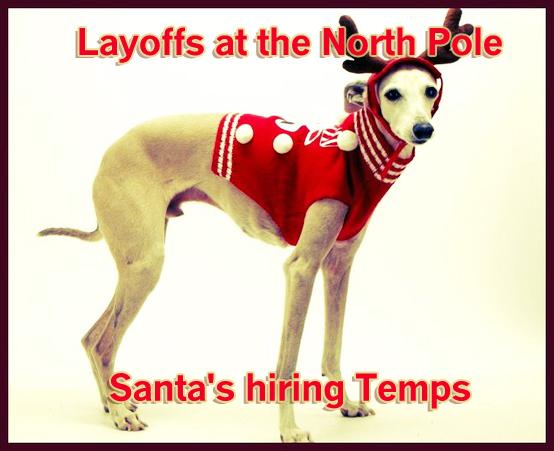 Funny Holiday Dog Card Saying