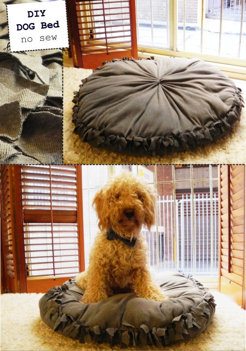 diy dog bed, no sew dog bed, DIY Dog Projects