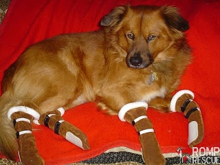 diy dog boots, home made dog boots, dog boots, dog booties, dog snow boots