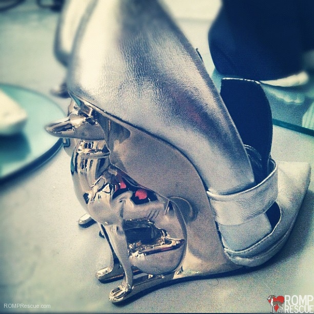 Greyhound Shoes, dog lover shoes, italian greyhound shoes, italian greyhound, greyhound shoes, alain quilici, david jorma, boots, heels, runway, fashion week, nyc, fashion, avant garde