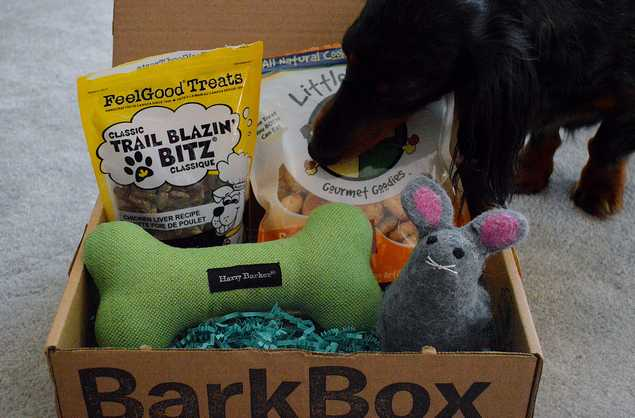 barkbox coupon code, april, 2013