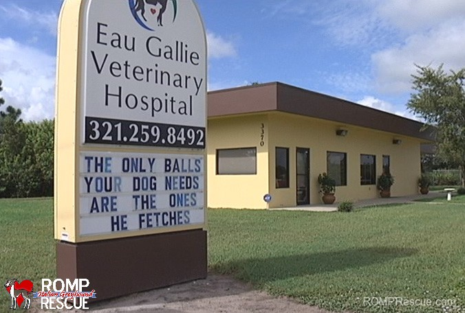 Funny Vet Clinic Signs