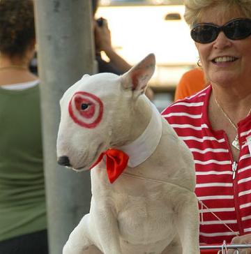 dog halloween costume diy, bullseye, target dog