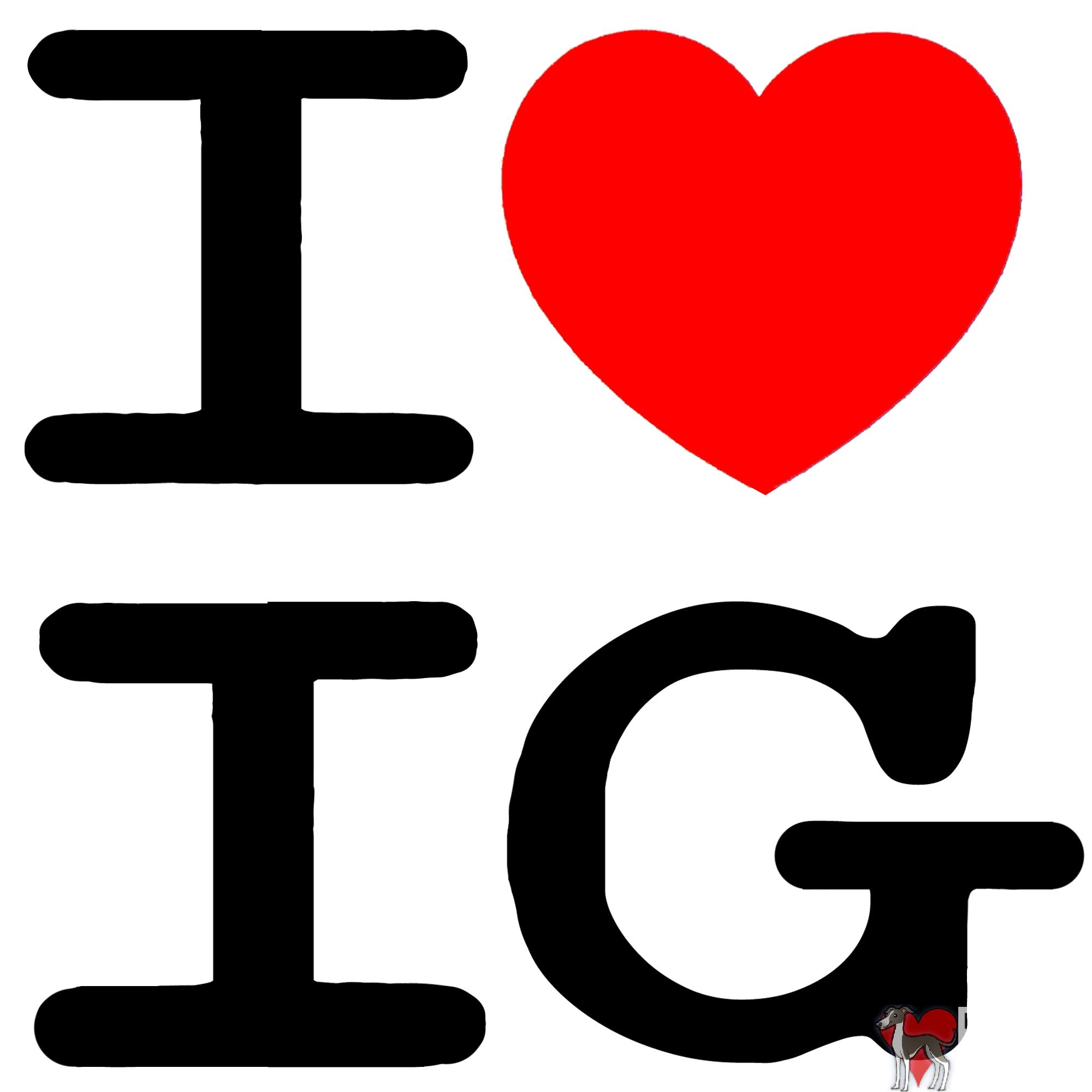 i heart IG, i love ig, i love iggys, i love italian greyhounds, italian greyhounds, shirt