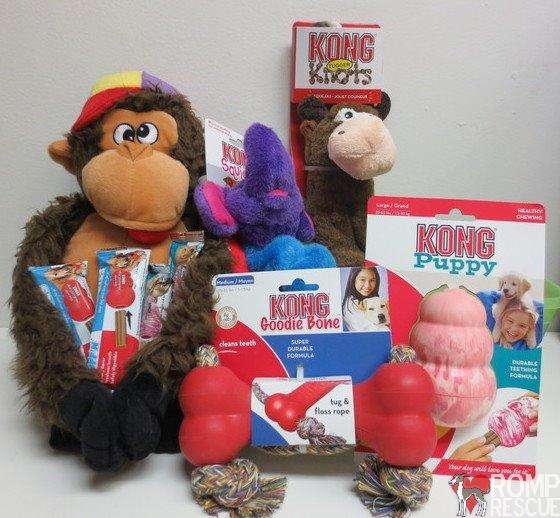 Kong, kong promo code, promo code, coupon code, auction, fundraiser, kong sample, kong gift basket, kong coupon code, kong promo code