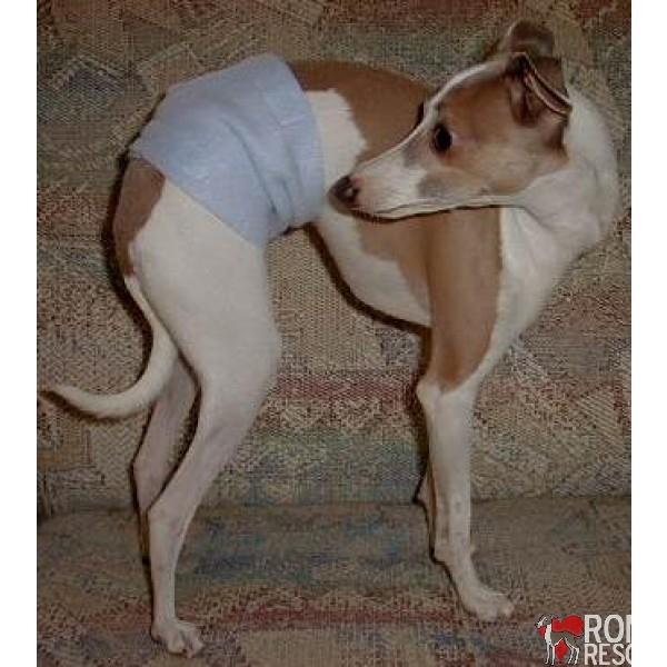 Dog Marking Solution, italian greyhound Dog Marking Solution, italian greyhound