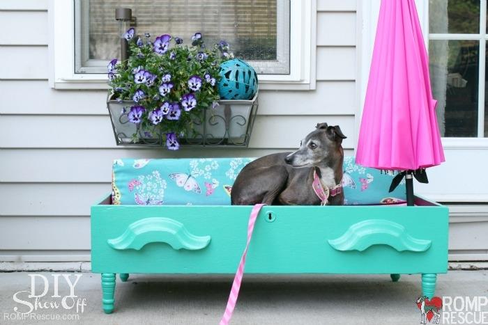 DIY Dog bed dresser, diy, dog bed, diy dresser bed, italian greyhound bed, diy italian greyhound, iggy, ig, do it yourself, homemade, handmade, home made, hand made, umbrella, summer, paint, dresser drawer