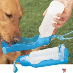 Dog Summer Tips, handidrink, handi drink, dog waterbottle, italian greyhound, dog water bottle, water bottle, water bottle dispenser, water bottle with dispenser, dog, dogs, pet, pup, pups
