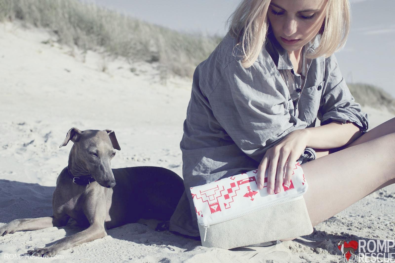 dog beach, montrose beach, montrose dog beach, dog beach meetup, chicago dog beach, chicago dog beaches, chicago dog friendly beaches, dog friendly beaches, chicago italian greyhound dog beach, italian greyhound beach, italian greyhound dog beach, itailan greyhound water, italian greyhound lake, italian greyhound swim, italian greyhound swimming, illinois dog beaches, illinois dog beach, Italian Greyhound Meetup, Dog beach playdate, dog beach play date, chicago italian greyhound, chicago, chicago dog playdate, chicago dog meetup, chicago dog play date, chicago dog meet up, chicago italian greyhound play date, chicago italian greyhound playdate, chicago italian greyhound meetup, chicago italian greyhound meet up, italian greyhound sand, italian greyhound fashion, italian greyhound