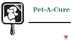 Pet A Cure, chicago dog groomer, chicago italian greyhound dog groomer