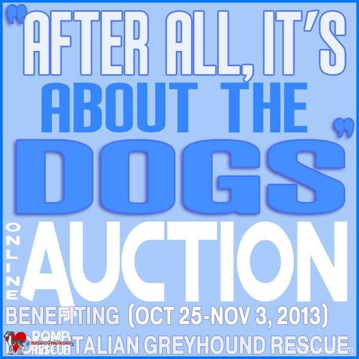 after all its about the dogs, auction, fundraiser, chicago, illinois, dog, canine, logo, image, graphic, facebook,