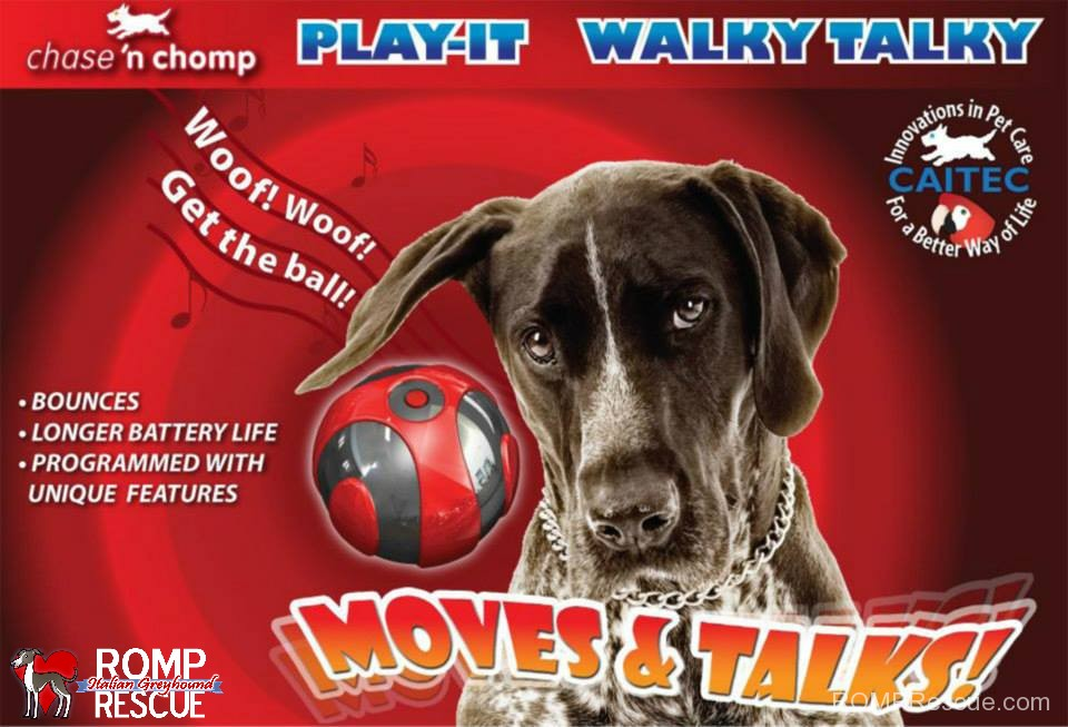 Caitec, walky talky ball, moves, bounces, chase n chomp, chase and chomp, new ball, electronic ball, interactive ball, dog, pet, canine, toy, best, petexpo