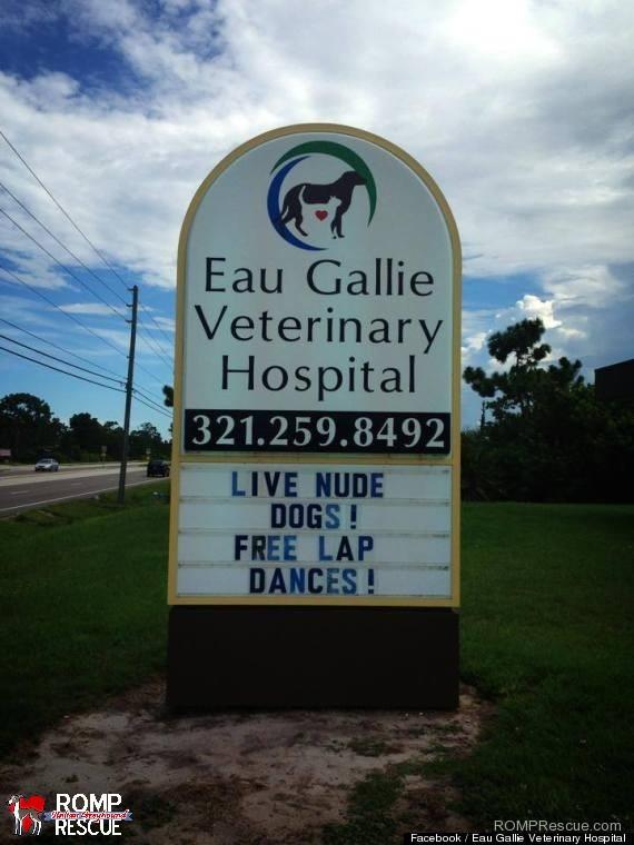 Funny Veterinarian Signs, veterinarian, funny veterinarian sign, funny vet sign, funny, vet, sign, vet, marquee,
