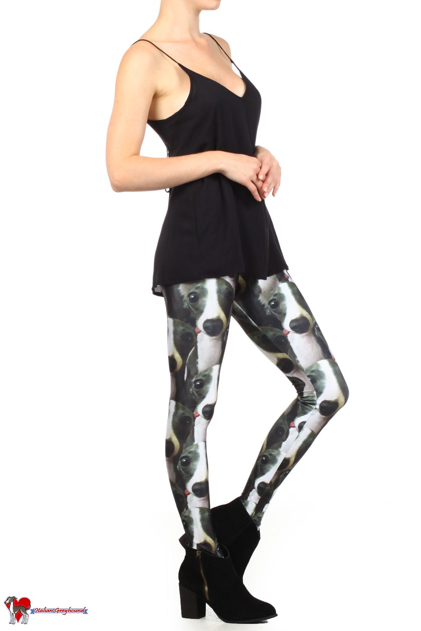 iggy fashion, italian greyhound, fashion, leggings, leggin, pants, greyhound, sighthound, trendy, los angeles, chic