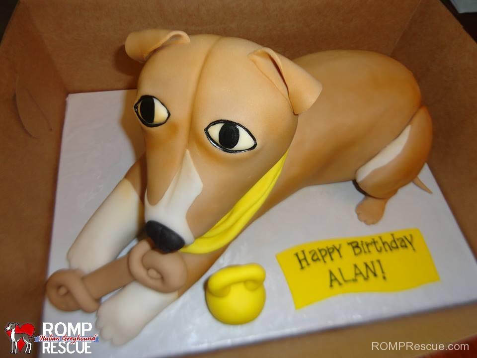 italian greyhound birthday cake, italian greyhound, iggy, ig, greyhound, birthday, cake, italian greyhound cake, italian greyhound birthday